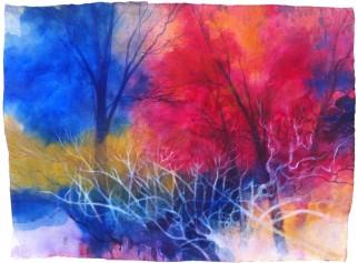 I colori nel bosco