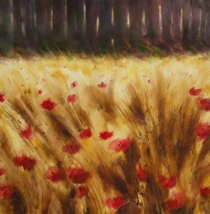 2011-paesaggio con grano e papaveri